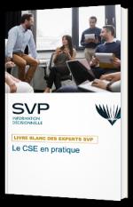 Le CSE en pratique