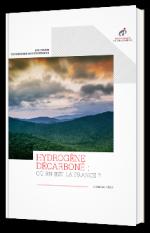 Hydrogène décarboné : où en est la France ?