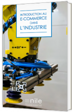 Guide d'Introduction au E-commerce B2B dans l'industrie