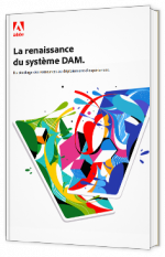 La renaissance du système DAM
