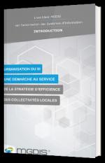 Urbanisation du Système d'Information comme stratégie d'efficience