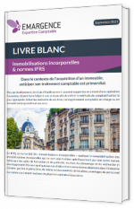 Immobilisations incorporelles & normes IFRS