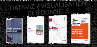 La Dataviz, ou comment mettre de l'ordre dans vos données